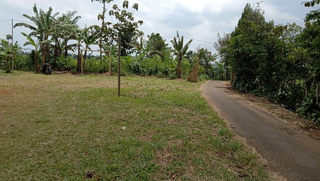 Calon Spot Wisata Desa Kadununggal